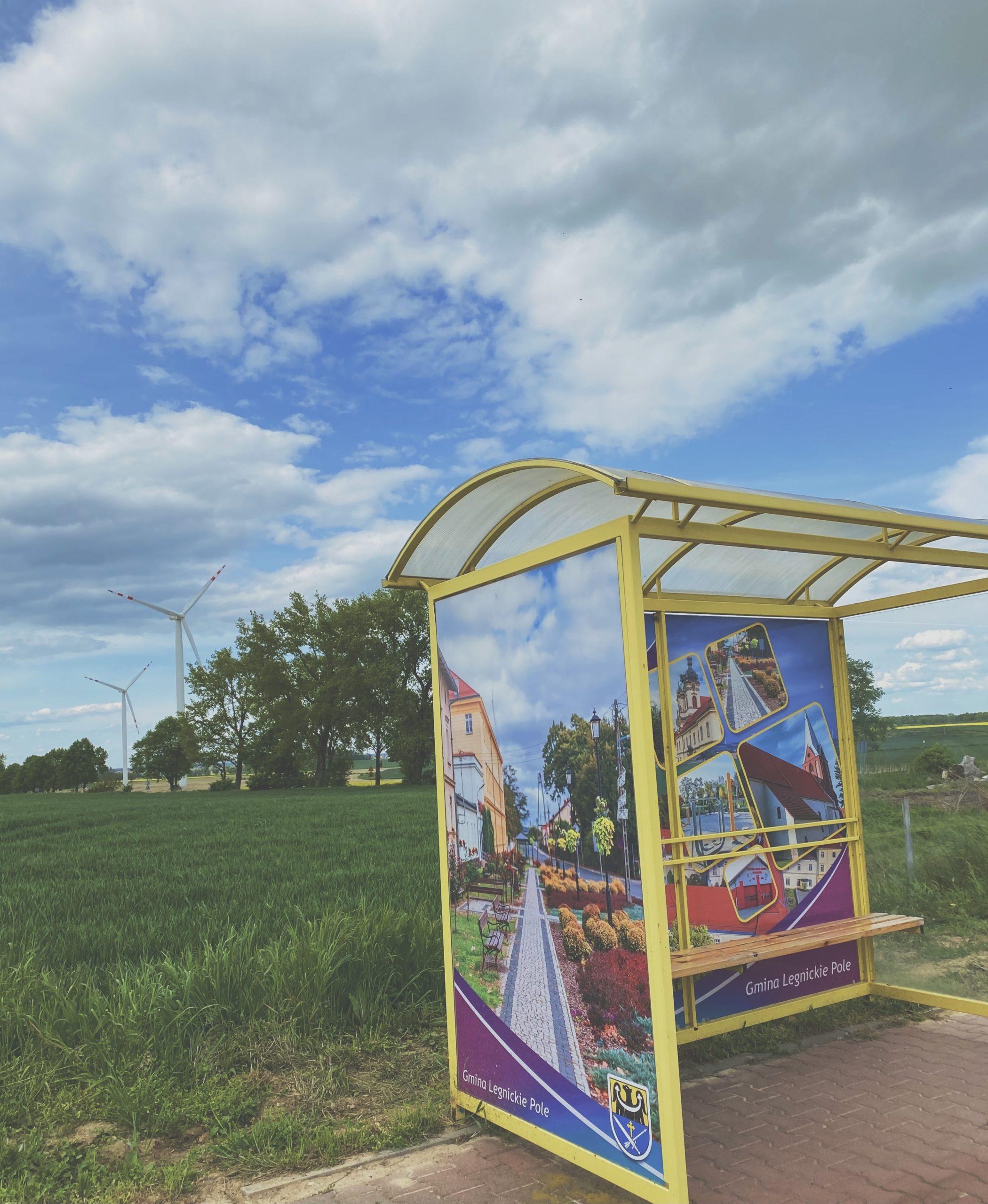 zdjęcie przedstawia przystanek w legnickim polu