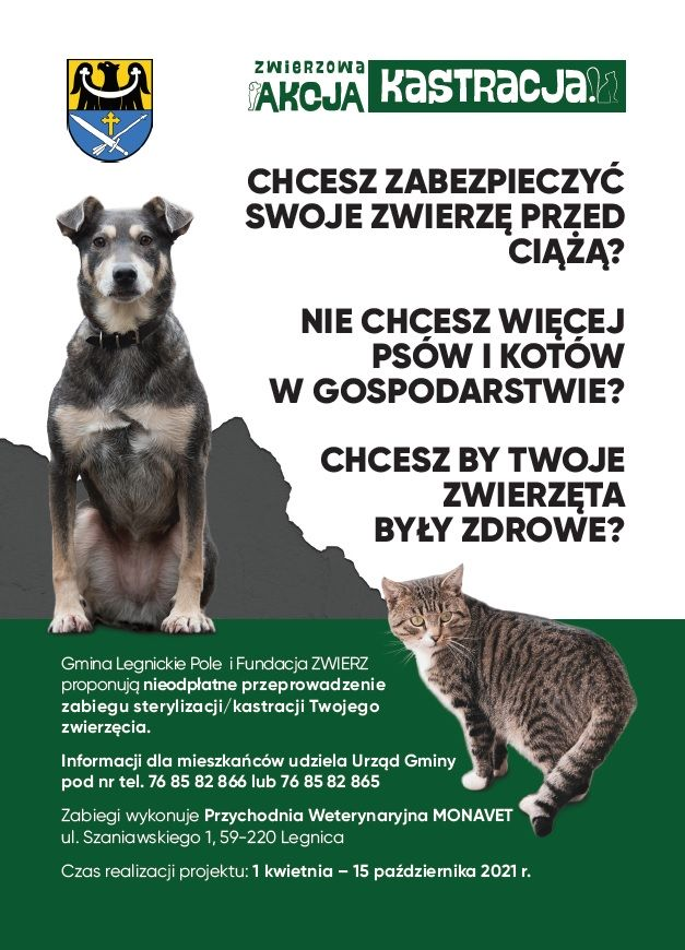 plakat przedstawiający psa i kota oraz informacje odnośnie akcji kastracja